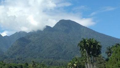 Photo of Mayat Pria Tanpa Identitas Ditemukan Gantung Diri di Lereng Gunung Salak Bogor