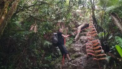 Photo of New Normal Jabar, Pendakian Gunung Dibolehkan Tapi Solo Hiking