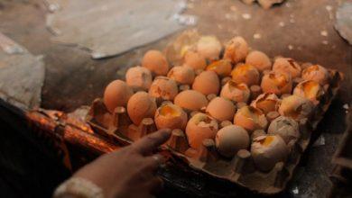 Photo of Telur Berisi Embrio Ayam Dijual di Pasar Bogor dan Pasar Anyar, Hati-hati!