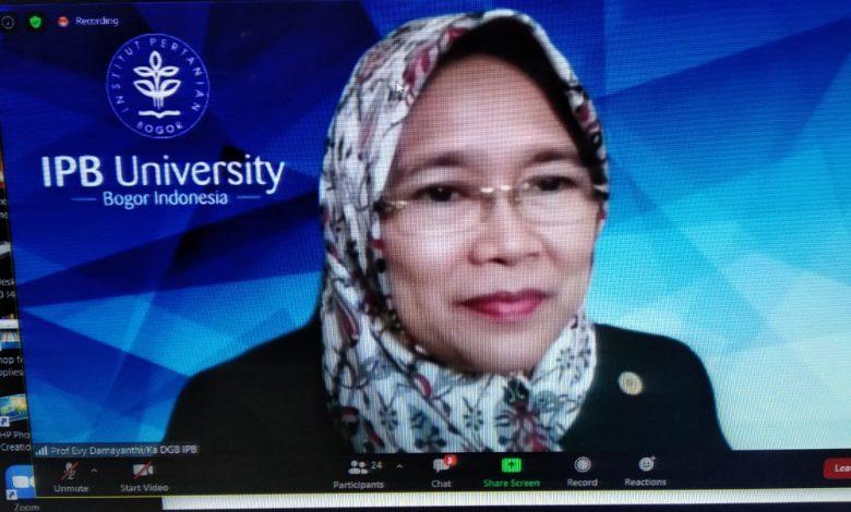 Evy Damayanti