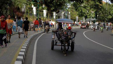 Photo of PSBB Berakhir, Bogor Rancang Pengembangan Jalur Sepeda dan Jogging Trek