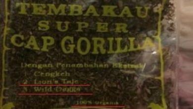 Photo of Rumah Kontrakan di Bogor Ini Dijadikan Industri Rumahan Tembakau Gorila