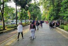 Photo of Olahraga Nyaman Akhir Pekan, Di Pedestrian Lingkar Istana Bogor dan Kebun Raya..