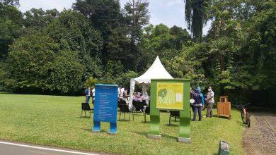Photo of Libur Panjang Berakhir,  Kebun Raya Bogor Dan The Jungle  Ada Rapit Test.