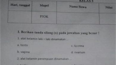 Photo of Guru Ngawur, Disdik Kota Bogor Kecolongan . Ada Soal Ulangan Kelas 5 SD, Bahas Vagina dan Sperma.