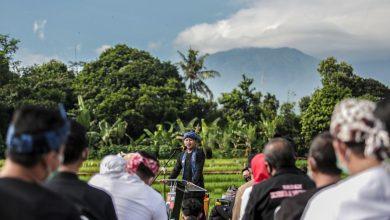 Photo of Sensasi Awal Tahun 2021, Wali Kota Bima Arya,  Briefing Stafnya di Tengah Persawahan